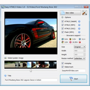 html5 video browser support